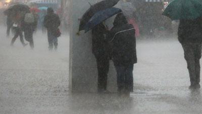 Cape Rains